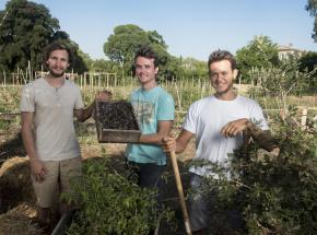 Oasis Citadine crée une ferme urbaine collaborative aux portes de Montpellier