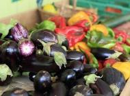 Filière agroécologie alimentation ©Montpellier3M