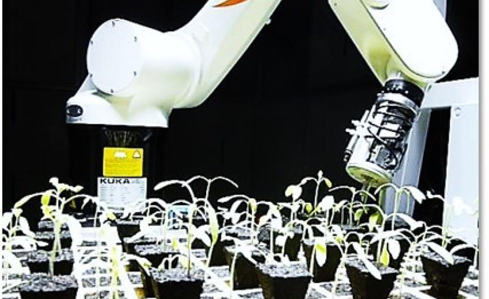 ALCI, de nouvelles synergies pour répondre aux enjeux planétaires de l'industrie agro-alimentaire
