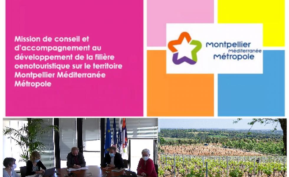 La Métropole de Montpellier, une terre de vins à découvrir sans modération