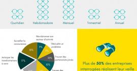 Infographie veille scientifique entreprises