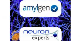 Amylgen et Neuron-Experts annoncent leur partenariat stratégique