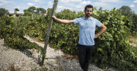 Du champ à l'assiette, #FoodTech Montpellier innove