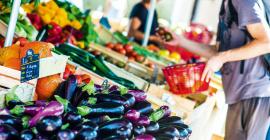 Montpellier affiche une ambition à la fois locale et globale de soutien à la production de la filière agroécologique et alimentaire. @sandra rossi