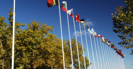 Les missions et les accords de coopération du service International de la Métropole facilitent votre implantation et l'accès aux marchés en Chine, aux USA, au Canada, en Russie...